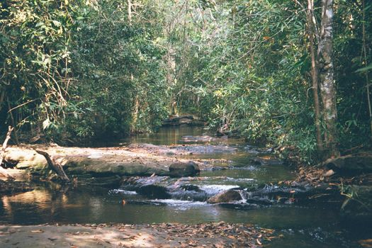 Cambodia (Angkor): Kobal Spien and Phnom Kulen picture 2