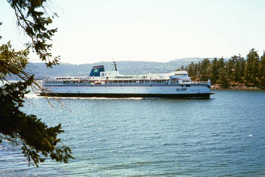 Canada (B.C.): Saltspring Island picture 7