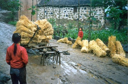 China: Yunnan Village: Hengdi picture 5