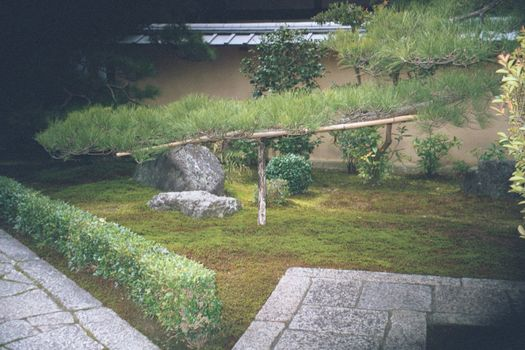 Japan: Kinkakuji and Ginkakuji picture 12