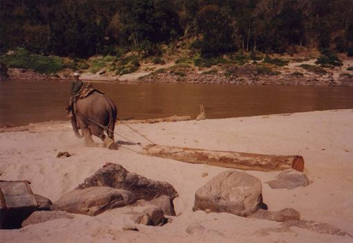 Laos: Mekong Below Houayxay picture 18