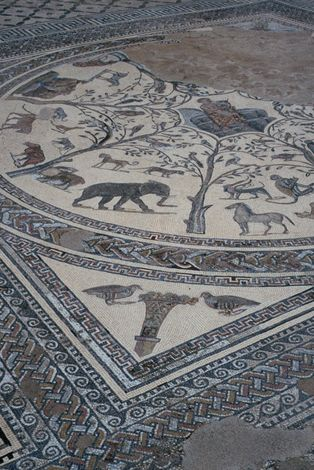 Morocco: Volubilis picture 3