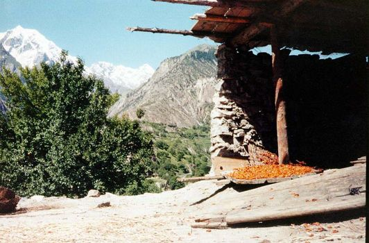 Pakistan: Chaprot picture 6