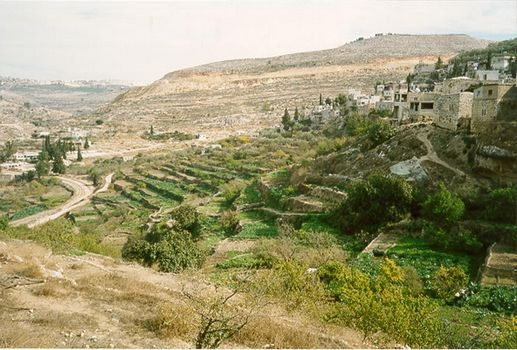 The West Bank: Battir