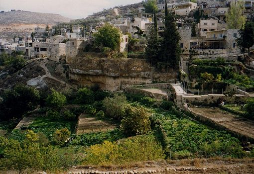 The West Bank: Battir picture 2