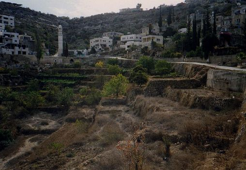 The West Bank: Battir picture 4