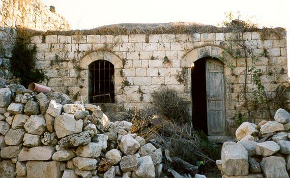 The West Bank: Deir Istiya and Salfit picture 5