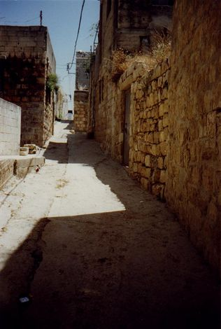 The West Bank: Deir Istiya and Salfit picture 7