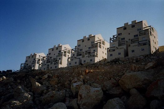 The West Bank: Israeli Settlements picture 22