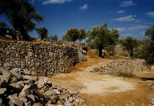 The West Bank: Jifna and Jiljilya