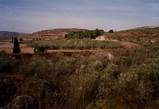 The West Bank: Northern Countryside picture 9