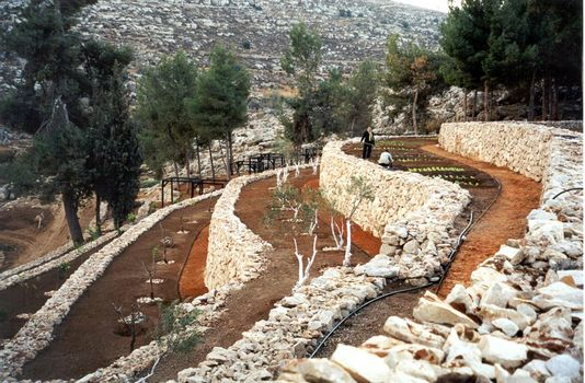 The West Bank: Solomon's Pools picture 14