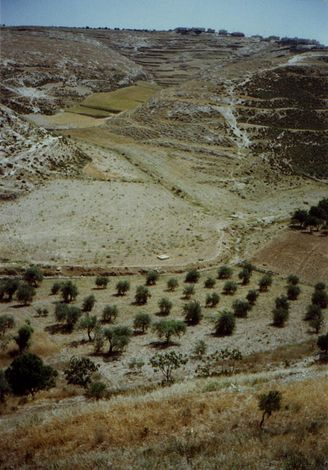 The West Bank: Southern Countryside picture 3