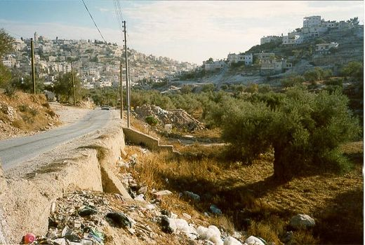 The West Bank: Southern Countryside picture 7