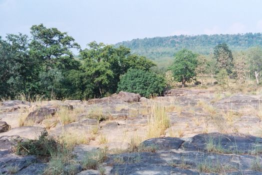 Northern India: Panna Falls picture 3