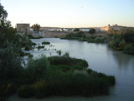 Spain: The City of Cordoba picture 3