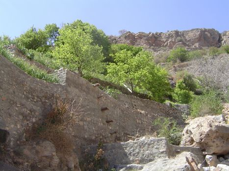 Oman: Sharayjeh picture 4