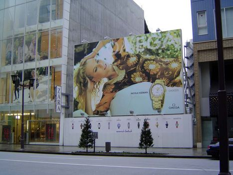 Japan: Tokyo: Ginza picture 5