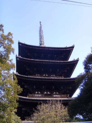 Japan: Nara: Shrines & Temples picture 20