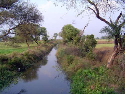 Northern India: Rani Kheri, Khaluwas, Maheva picture 5
