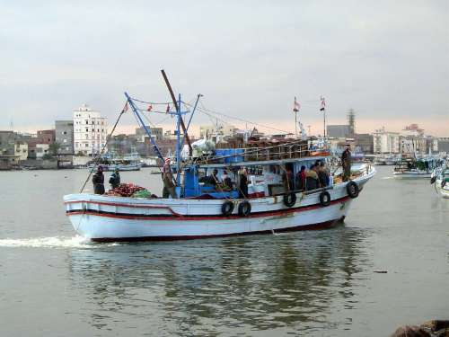 Egypt: Skirting the Delta