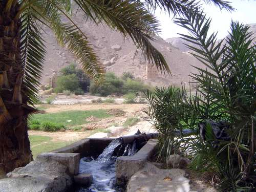 Yemen: Hadramaut Irrigation picture 6