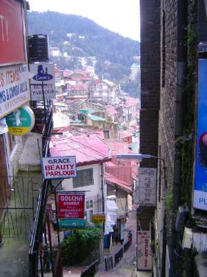 Northern India: Shimla Businesses