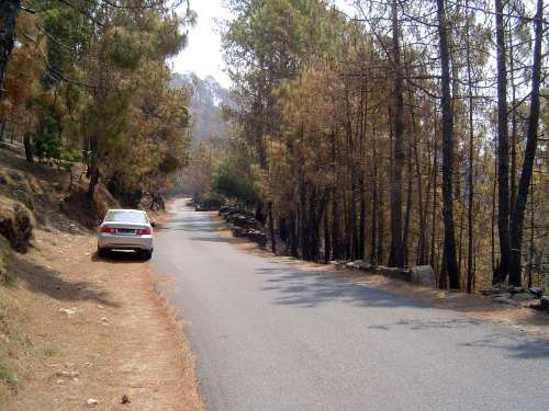 Northern India: Almora District picture 10