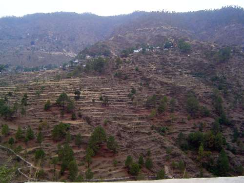 Northern India: Almora District picture 6