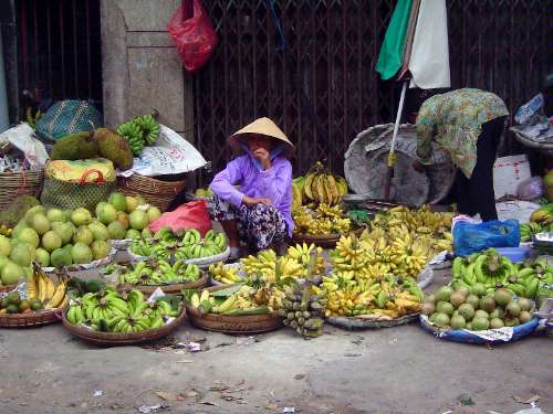Vietnam: HCMC to Cantho picture 32