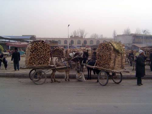 China: Kashgar Sunday Market picture 5