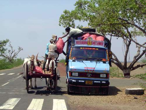 Peninsular India: Karnataka Road Trip picture 40