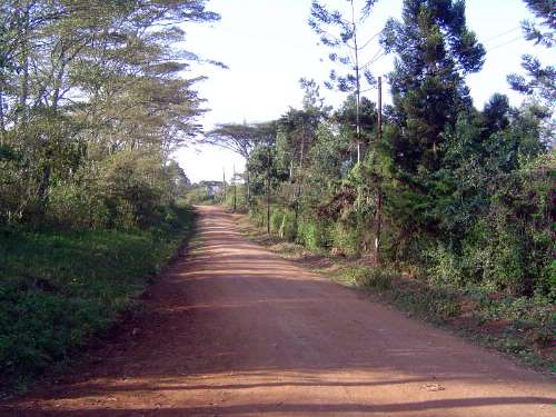 Kenya: Blixen and the Ngong Hills  picture 9