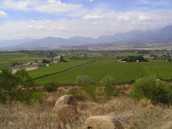 South Africa: Paarl picture 9