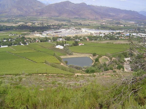 South Africa: Paarl picture 10