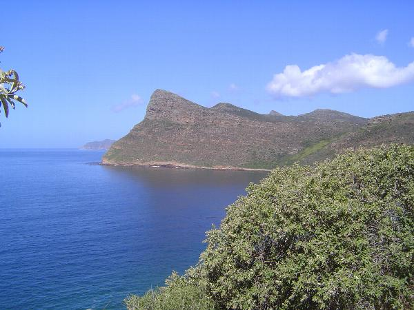 South Africa: Cape Peninsula picture 19