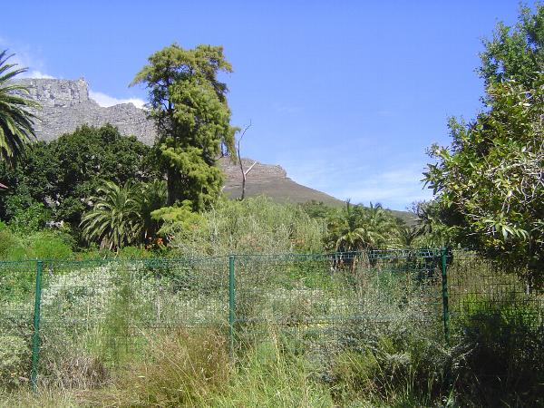 South Africa: Cape Town Since 1900 picture 43