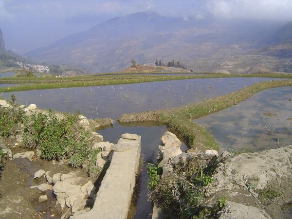 China: Hani Terraces 1: Walking a Channel picture 22