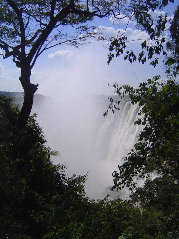 Zambia: Victoria Falls and Livingstone picture 7