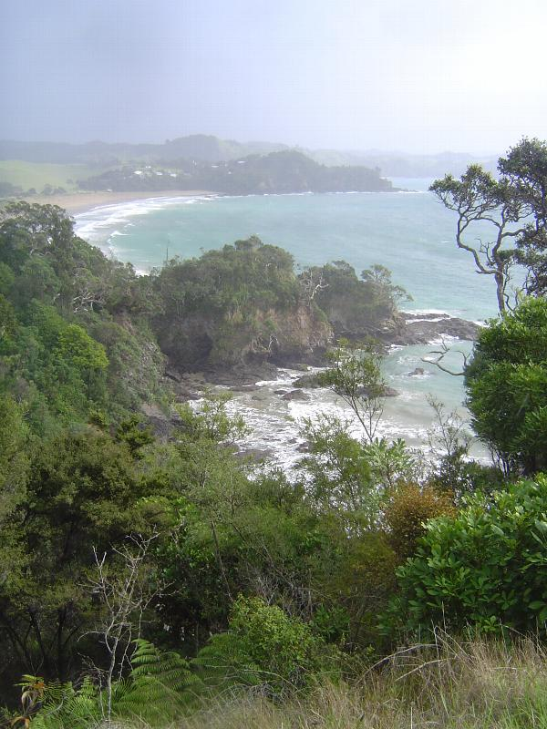 New Zealand: Whangarei Heads picture 5